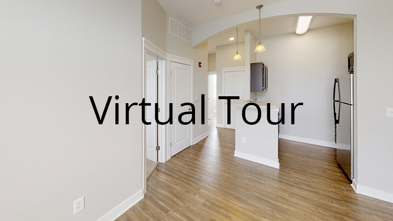 Bear - virtual tour